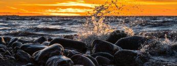 Cultura Oceânica por professor Alexander Turra – Instituto Oceanográfico da USP